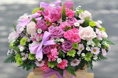 Shop hoa tươi Blooms