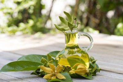 Tinh dầu thiên nhiên nhập khẩu - IDANGCAP Việt Nam là Top 5 địa chỉ mua tinh dầu tốt nhất tại TP. Hồ Chí Minh