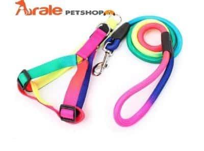 Arale PETShop cung cấp phụ kiện thú cưng, các loại quần áo, thức ăn và phụ kiện làm đẹp, phụ kiện nhà, nệm, lồng, dụng cụ vệ sinh…
