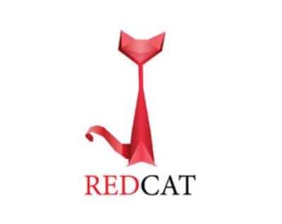 Red Cat: Ý tưởng thiết kế logo thời trang chuyên nghiệp